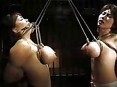 japanese breast subjugation asian bdsm bondage