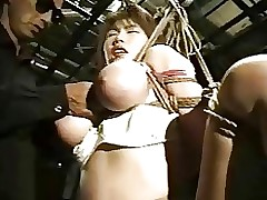 japanese obedience asian bdsm bondage