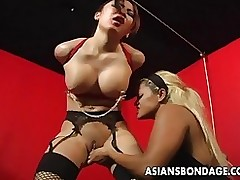 tied oriental princess clamped toyed chick hangs asiansbondage fuck play